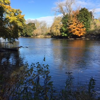 muskegon river michigan october fall 2016